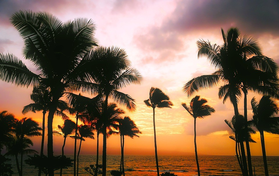 Hawaii Luxury Villa Rentals